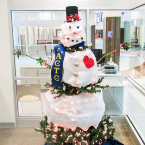 How to create a White Snowman from a Green Christmas Tree