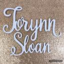 wood-name-sign-torynn-sloan